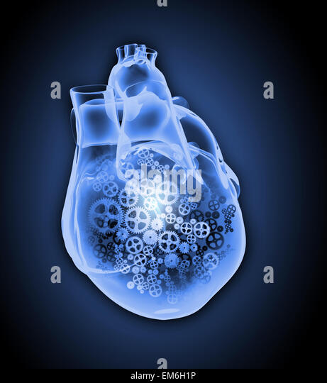 Heart Rate And Screen Stock Photos & Heart Rate And Screen ...