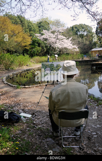 japanese man painting a flowering cherry tree in the kyoto botanical garden a popular hobby