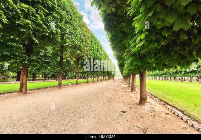 Jardin du luxembourg and summer stock photos jardin du for Jardin 974