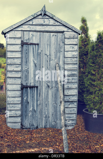 Shed Leaves Stock Photos Amp Shed Leaves Stock Images Alamy