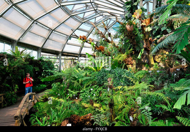 Exceptionnel Greenhouse, Botanical Garden, Dahlem, Berlin, Germany   Stock Image
