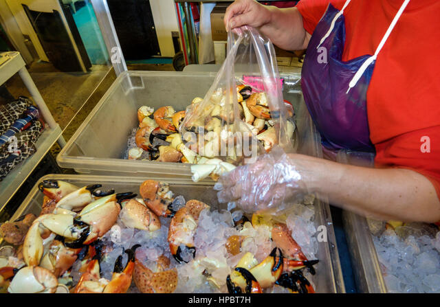 Stone crab claws stock photos stone crab claws stock for Key largo fish market