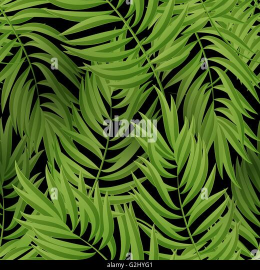 green palm leaves summer - photo #18
