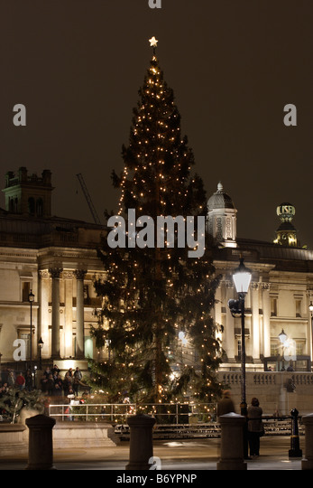 Trafalgar Square Christmas Tree Stock Photos & Trafalgar Square ...