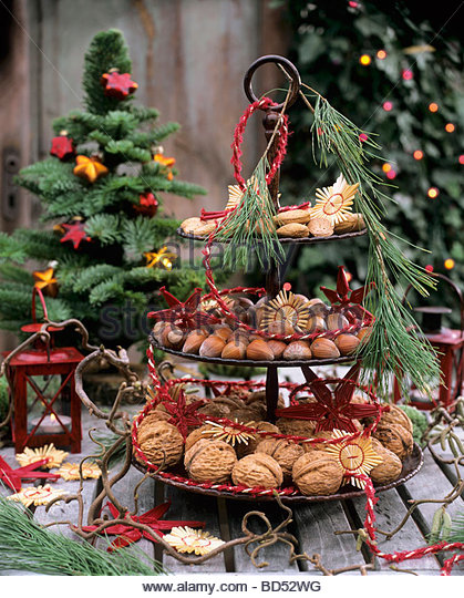 Abies nobilis stock photos abies nobilis stock images - Etagere weihnachtlich dekorieren ...