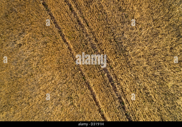 Wheat Field Aerial Stock Photos &amp- Wheat Field Aerial Stock Images ...