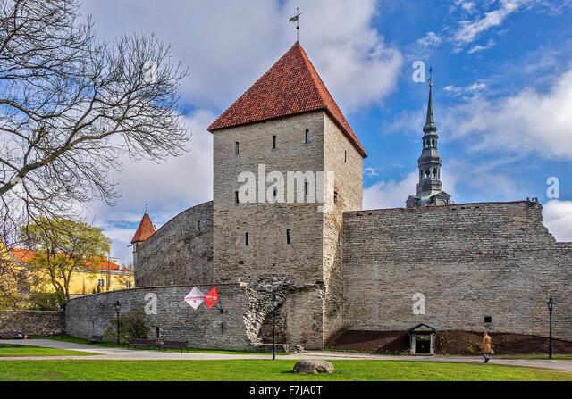 vestal - Deutsch-Übersetzung Linguee Wörterbuch