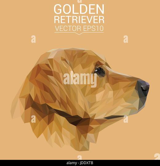 Golden Triangle Dog Training