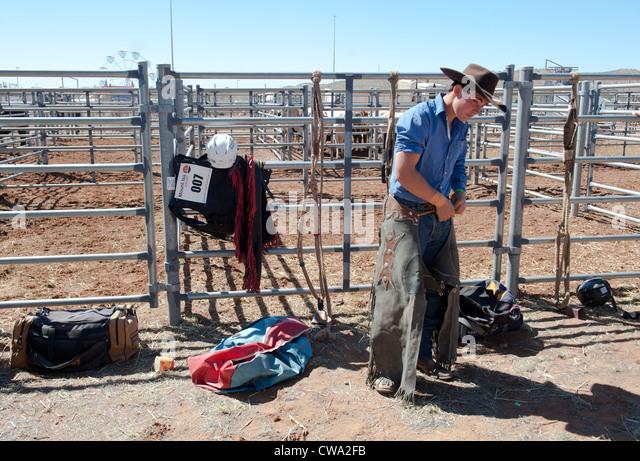 Bull Riding Stock Photos Amp Bull Riding Stock Images Alamy