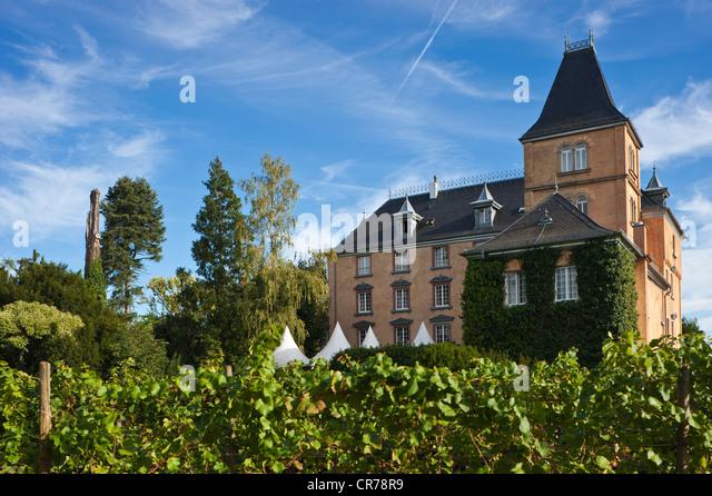 Schloss Hotel Bad Bergzabern