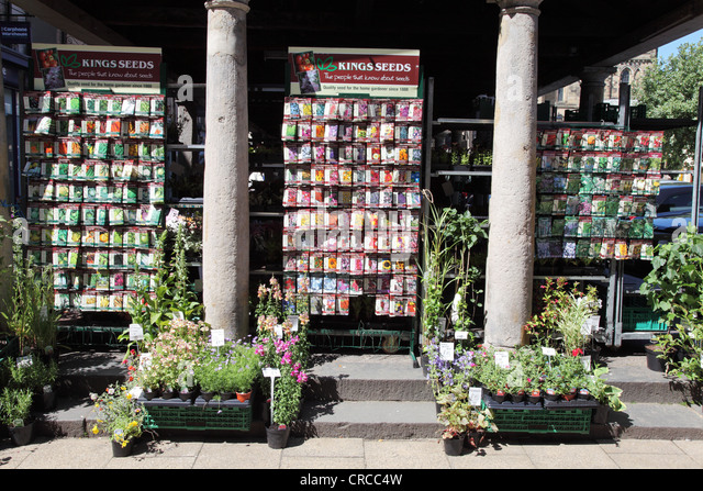 plants and flower and vegetable kingu0027s seeds for sale in the market place hexham england