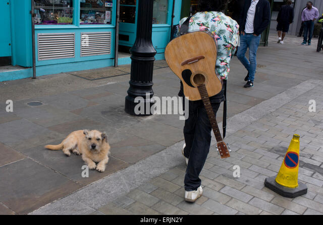 A Guitar Man Walks Through Waterloo Street With Dog Sitting On The Pavement