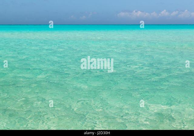 Shroud cay stock photos shroud cay stock images alamy seascape of shroud cay credit as don paulson sciox Images