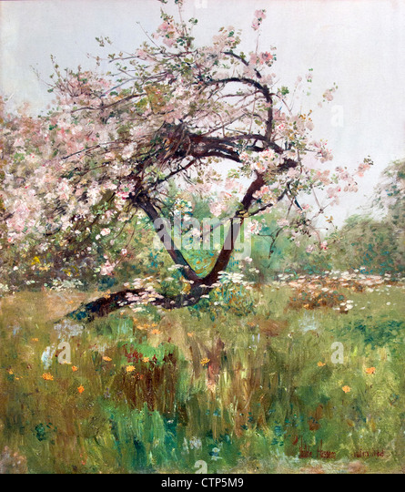 Peach Blossoms Villiers le Bel 1887 Childe Hassam American United States of America - Stock Image
