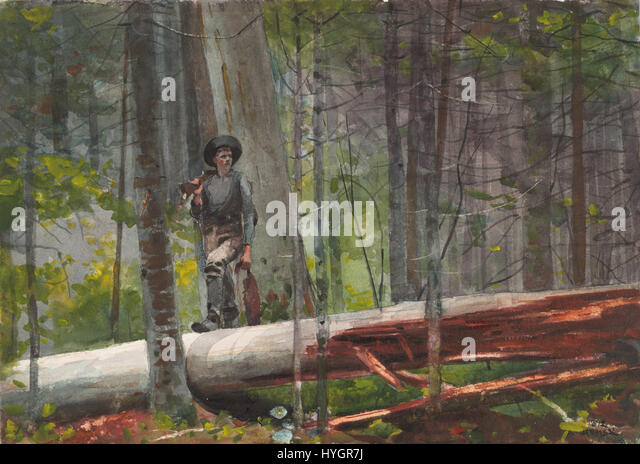 campfire adirondacks by winslow homer Campfire, adirondacks the painting titled campfire, adirondacks was painted in 1892 by an american landscape painter winslow homer who is considered one of the foremost painters in 19th century.