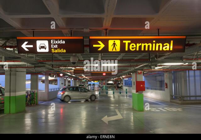 Thrifty car rental boston logan airport 13