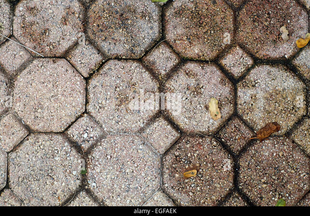 Looking Down At Octagonal And Square Brick Pavers That Fill The Image With  Dead Leaves.