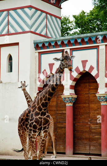 Zoologico stock photos zoologico stock images alamy for Jardin zoologico buenos aires