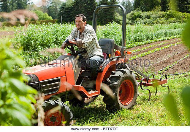 Farmer On Tractor : The tractor stock photos images alamy