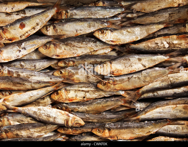 Pile salted dried fish stock photos pile salted dried for Dried salted fish