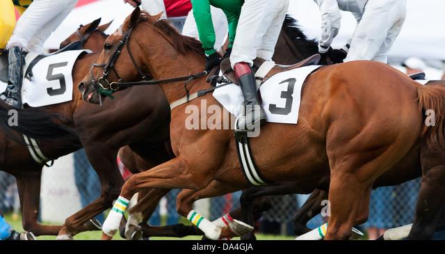 Jockey Horse Race Saddle Stock Photos & Jockey Horse Race ...  Jockey Horse Ra...