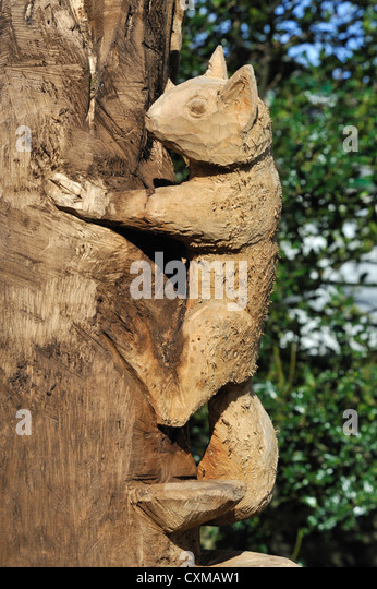 Chainsaw tree stock photos images
