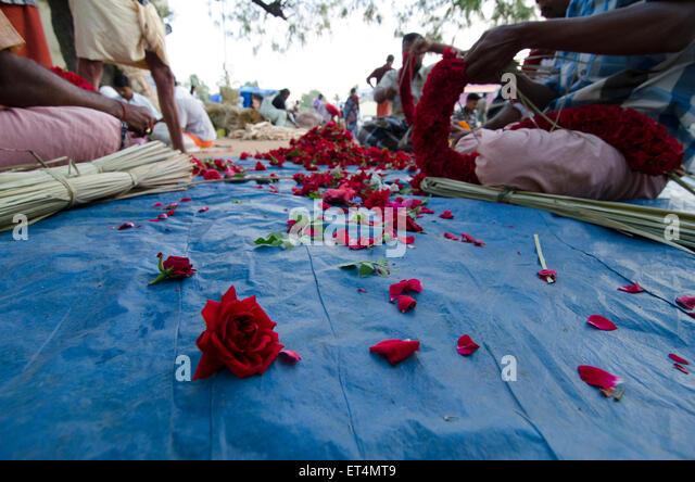 Petals On Floor Stock Photos & Petals On Floor Stock ...