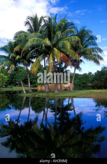 Fairchild Tropical Botanic Garden Stock Photos Fairchild