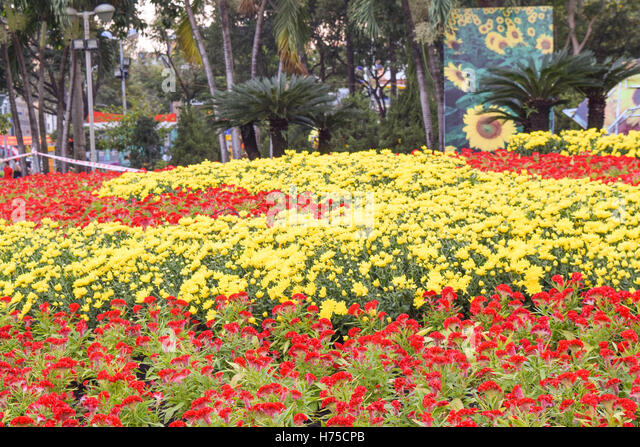 flower festival in vietnam The following is an incomplete list of festivals in asia list of festivals in japan chiang mai flower festival inthakin kathin festival.