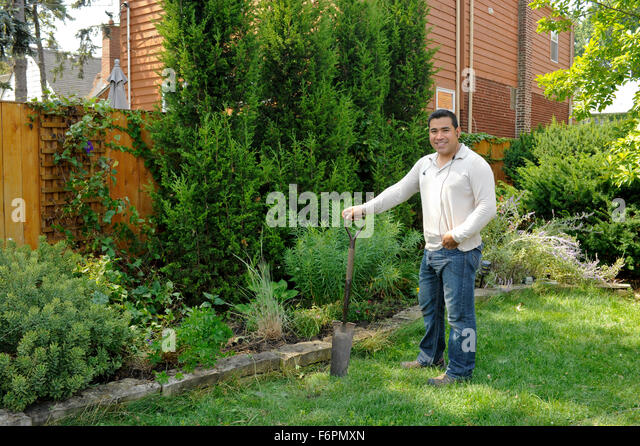 mexican man working in flower garden stock image