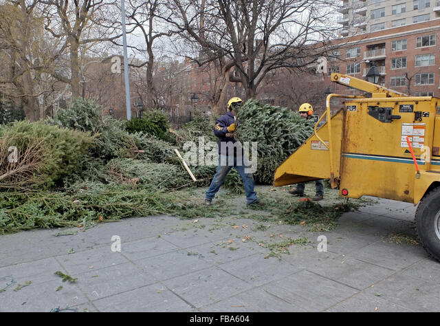Christmas Tree Recycling Greenwich : Department of sanitation stock photos