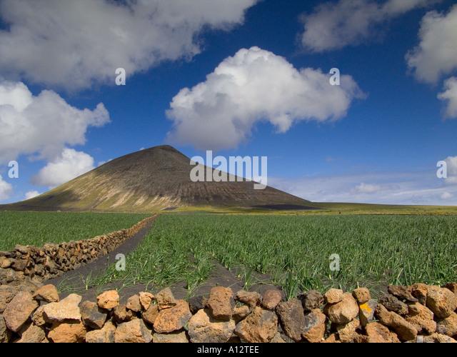 fertile soil volcano - photo #5