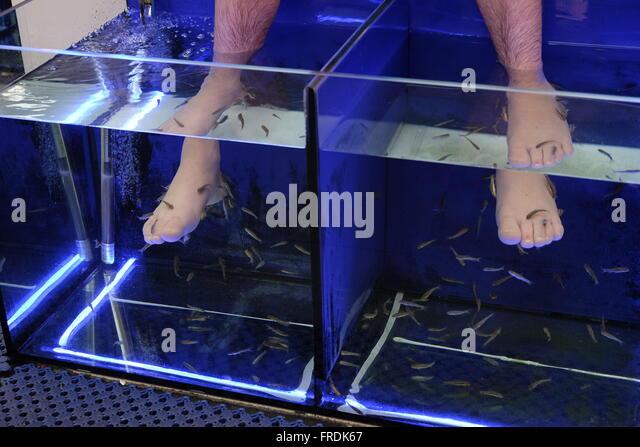 Soaking foot bath stock photos soaking foot bath stock for A salon called fish