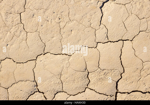 Dry mud texture dried riverbed stock photos dry mud texture surface of cracking dried brown mud stock image sciox Images