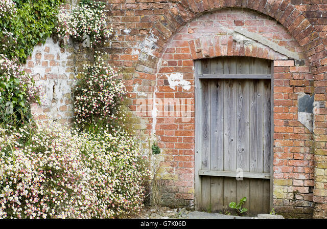 Wighton United Kingdom  city pictures gallery : wooden garden gate set in a brick wall in a walled garden Stock ...