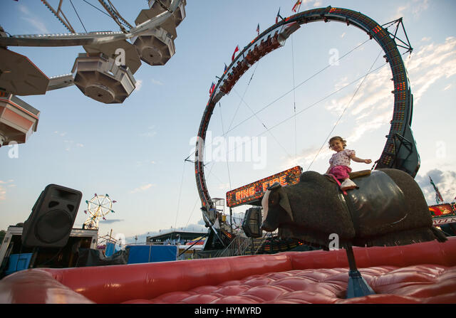 Mechanical Bull Stock Photos Amp Mechanical Bull Stock