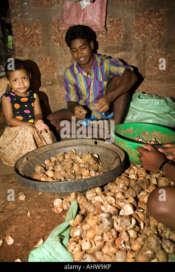 Cottage Industries India Stock Photos Amp Cottage Industries