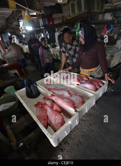 Nusa dua market stock photos nusa dua market stock for Fish and shrimp near me