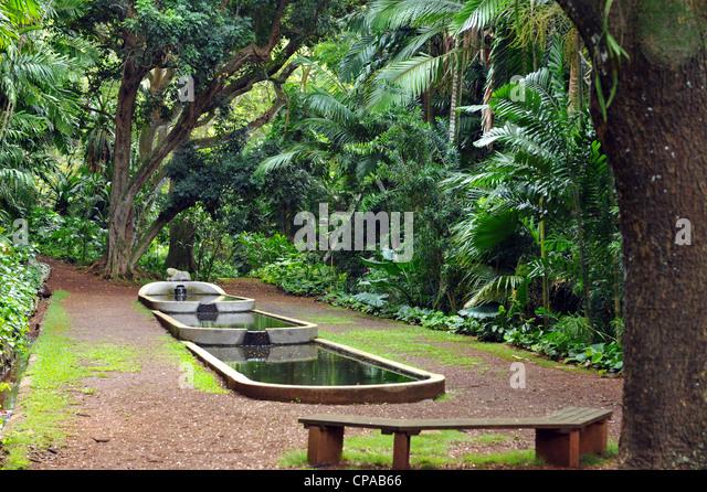 Allerton Garden Hours Allerton Garden Poipu HI Top Tips Before