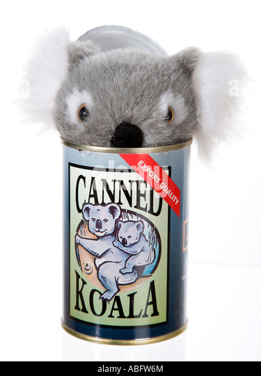 Koala Toy Stock Photos Amp Koala Toy Stock Images Alamy