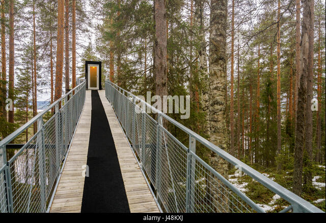 Tree Hotel In Lapland, Sweden   Stock Image