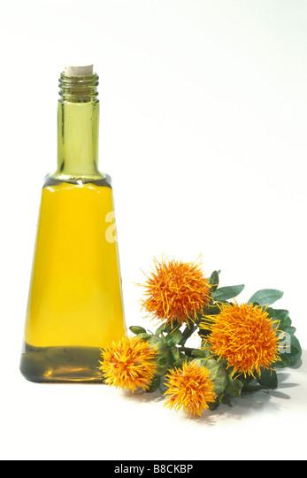 Carthamus Tinctorius Safflower: Safflower Oil Stock Photos & Safflower Oil Stock Images