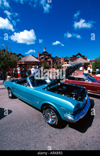 Mustang car stock photos mustang car stock images alamy for Steamboat motors used cars