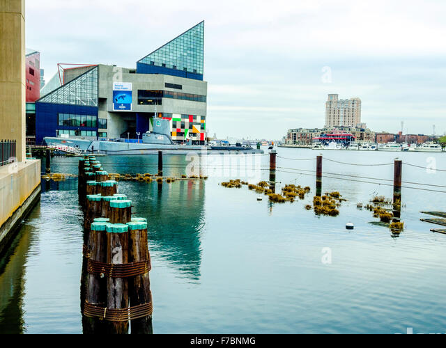 National Aquarium At Baltimore Stock Photos National Aquarium At Baltimore Stock Images Alamy