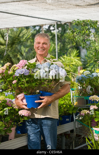 Ravishing Senior Man Holding Plants Garden Centre Stock Photos  Senior Man  With Remarkable Senior Man With Pot Plants At Garden Centre  Stock Image With Delightful Uk Garden Buildings Also Peking Garden Killyleagh In Addition Pallet Garden Furniture For Sale And Garden Trollies As Well As Moon Gazing Hare Garden Ornament Additionally Pavilion Gardens Brighton From Alamycom With   Remarkable Senior Man Holding Plants Garden Centre Stock Photos  Senior Man  With Delightful Senior Man With Pot Plants At Garden Centre  Stock Image And Ravishing Uk Garden Buildings Also Peking Garden Killyleagh In Addition Pallet Garden Furniture For Sale From Alamycom