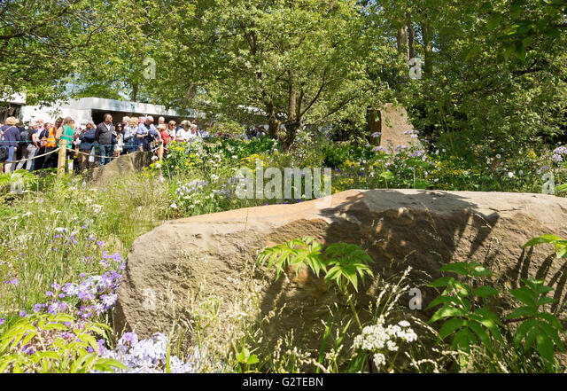 Rhs chelsea 2016 stock photos rhs chelsea 2016 stock images alamy - Chelsea flower show gold medal winners ...