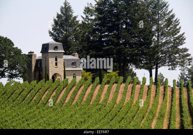 Residence Situated In The Terra Valentine Winery, Napa Valley, California,  USA   Stock