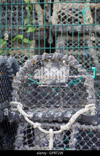 Used Lobster Traps Stock Photos & Used Lobster Traps Stock ...