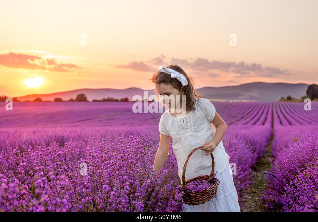 kazanlak women Deeper pink roses are fit for a thank you gift or to celebrate a milestone of a woman's life  your detailed guide to the 2019 rose festival in kazanlak, bulgaria.
