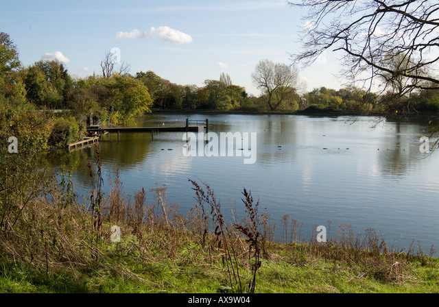 Hampstead pond men 39 s stock photos hampstead pond men 39 s stock images alamy for Hampstead heath park swimming pool